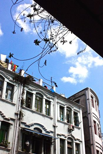 Looking Up Shophouses  Xiamen Xiamen,China Blue Sky Silhouette Architecture Eastmeetswest Wandering Around Aimlessly Wanderlust Wanderer Street Photography ASIA China Trip Travel Photography Architecture_collection
