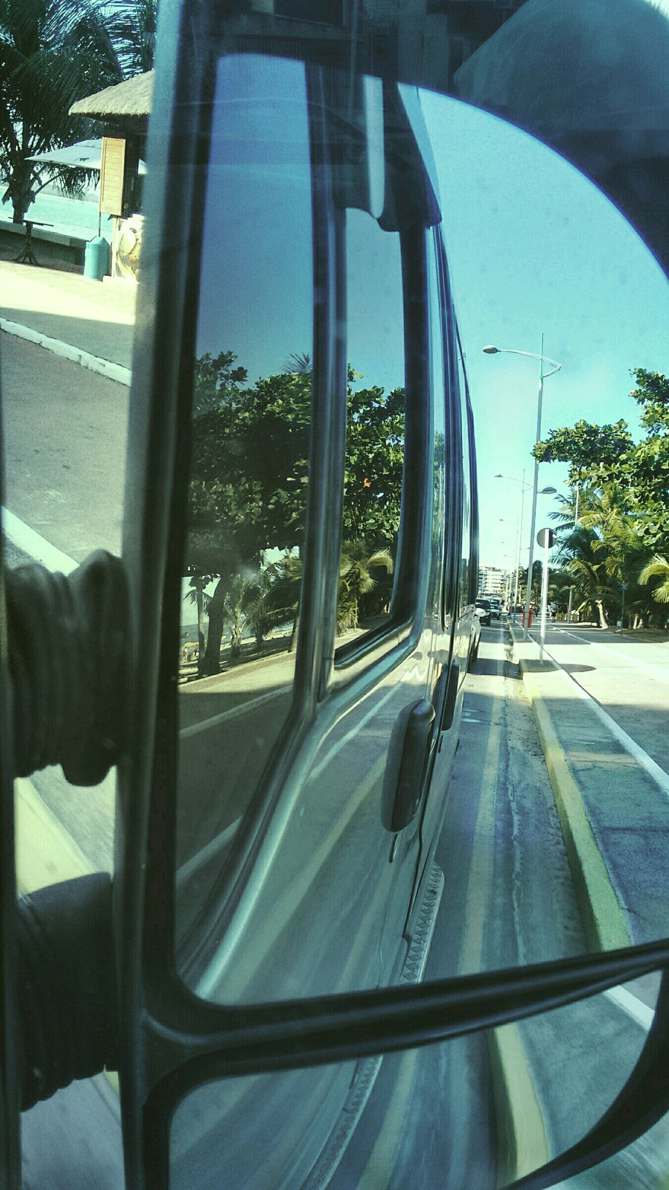 transportation, mode of transport, vehicle interior, glass - material, land vehicle, car, transparent, window, travel, windshield, tree, car interior, road, blue, part of, day, public transportation, indoors, looking through window, reflection