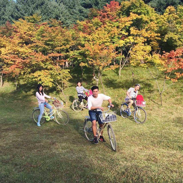 Fall Beauty Colors Of Atumn Seoul_korea Nami Island enjoy the beauty of nature..
