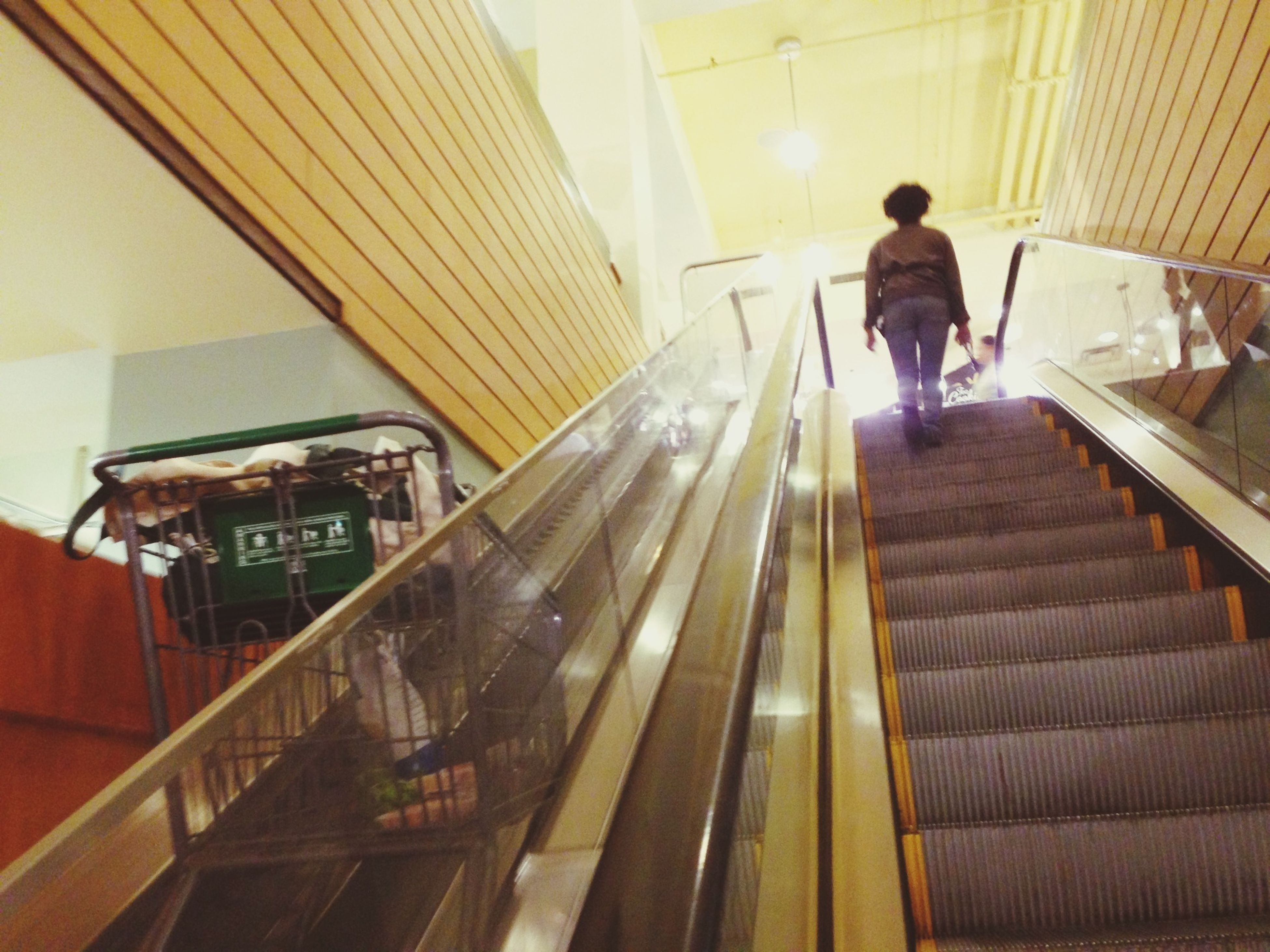 indoors, lifestyles, men, full length, steps, steps and staircases, walking, staircase, rear view, escalator, railing, leisure activity, person, built structure, standing, architecture, casual clothing