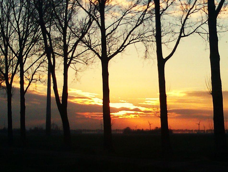 Sunset Taking Photos Enjoying Life Hello World Check This Out Netherlands