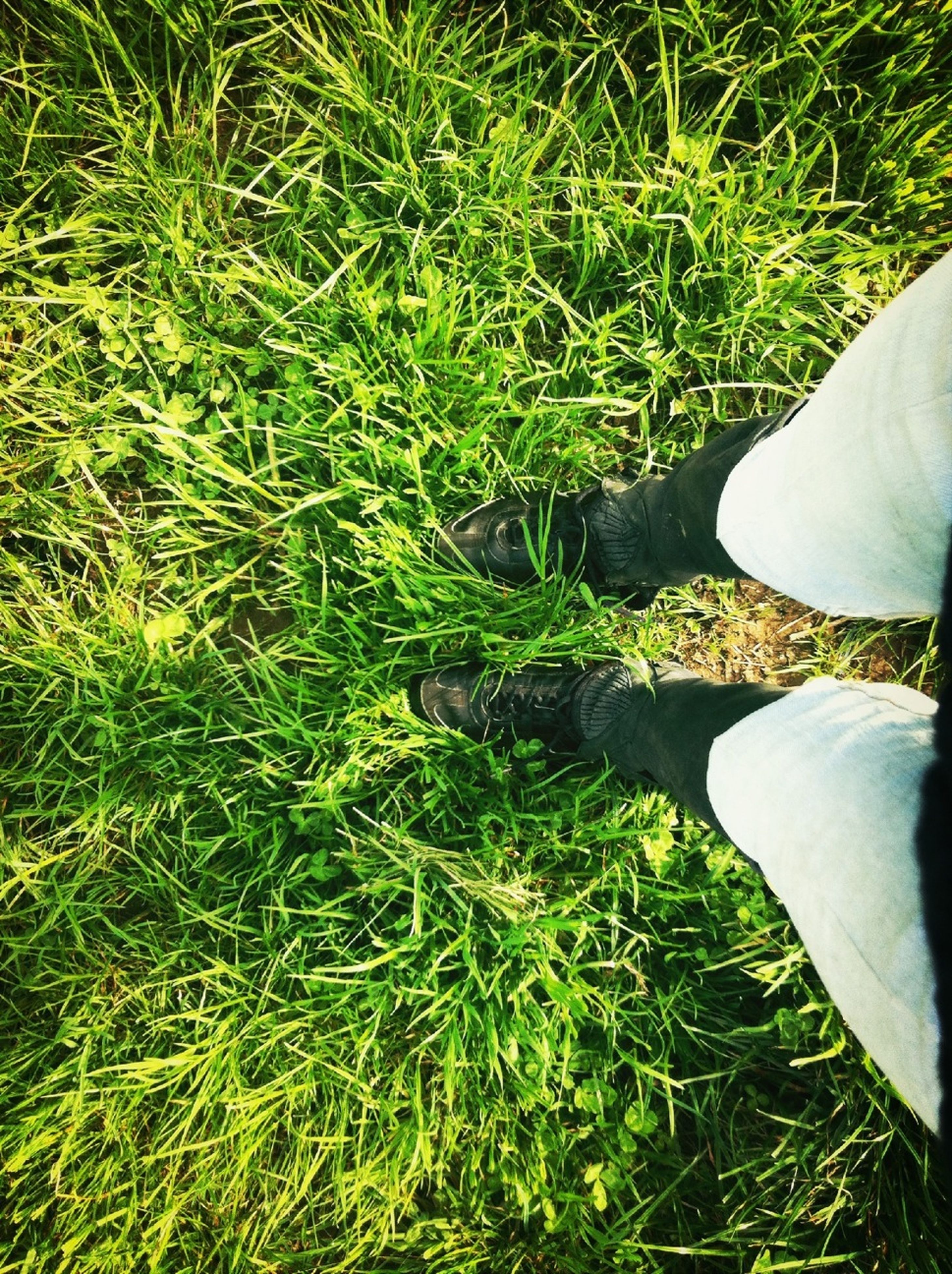 low section, grass, person, lifestyles, shoe, standing, leisure activity, high angle view, grassy, field, men, personal perspective, unrecognizable person, human foot, green color, footwear
