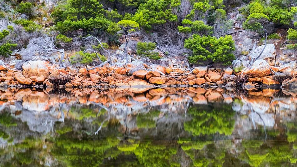 Waychinicup Inlet. Sth West Aus. Reflection_collection Reflections Albany Western Australia WesternAustralia Check This Out Taking Photos Shotoftheday Eyemphotography The Wild EyeEm Best Shots Showcase July