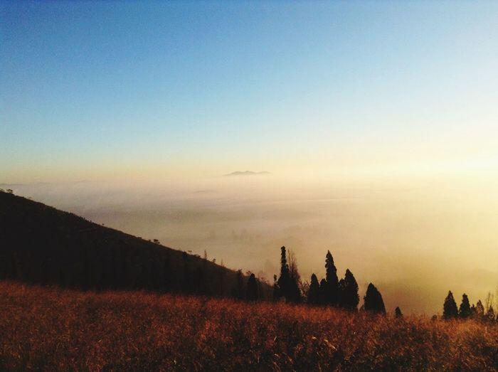 远处那不存在的山
