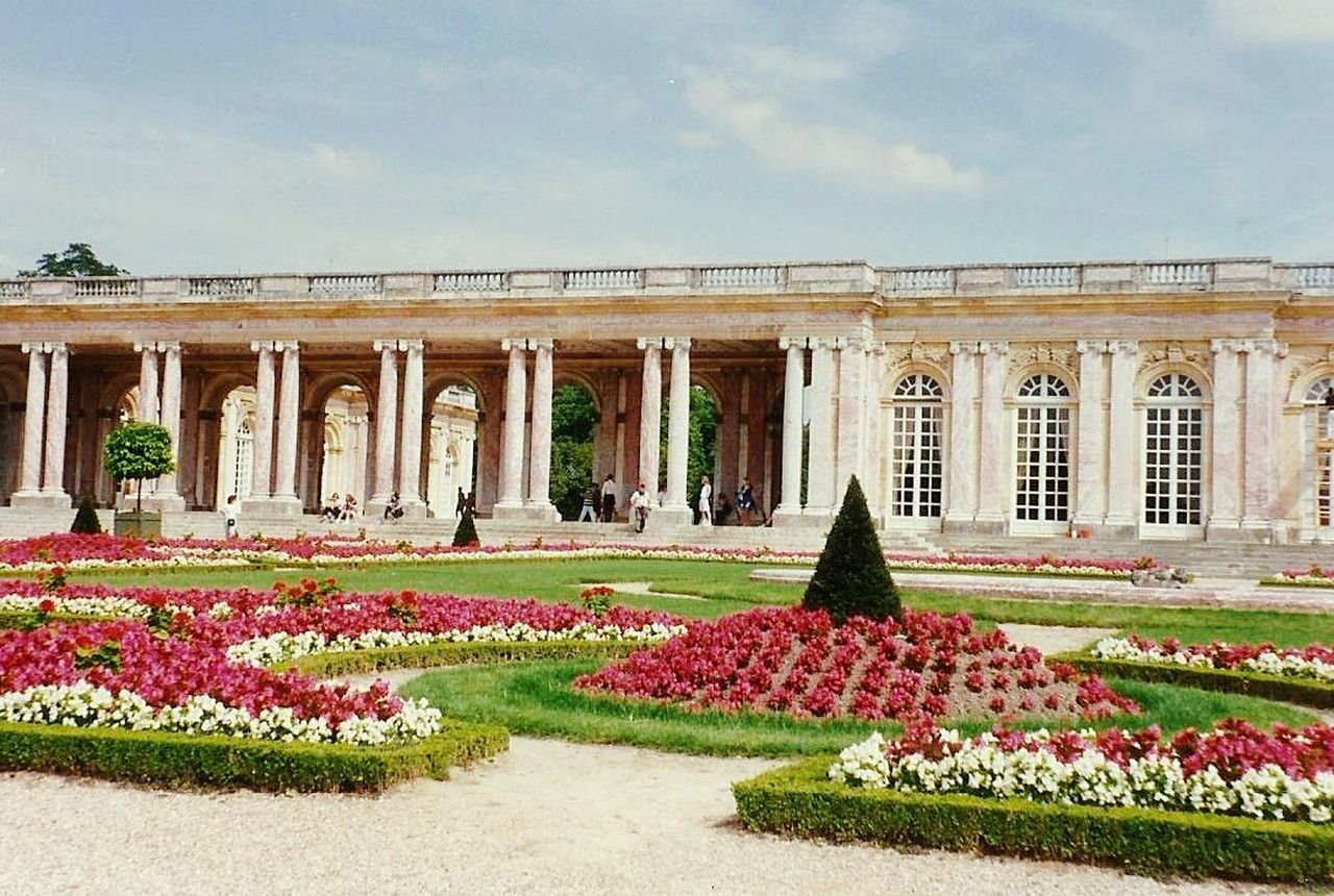 flower, architectural column, architecture, history, travel destinations, flowerbed, plant, no people, outdoors, sky, day