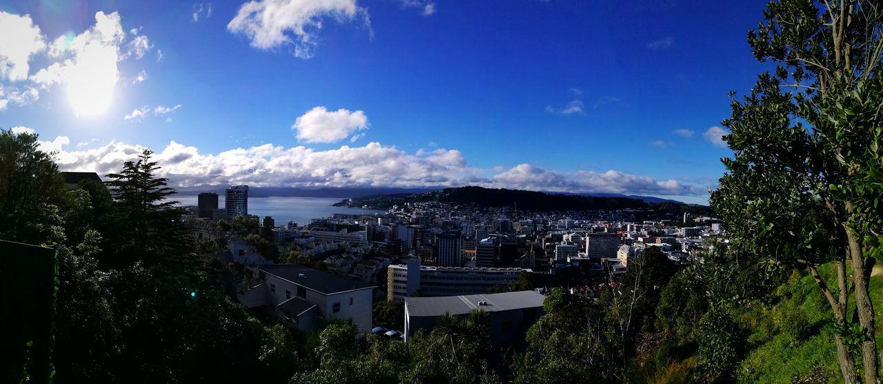 Wellington  New Zealand Blue Sky Cloud City Sea University Campus