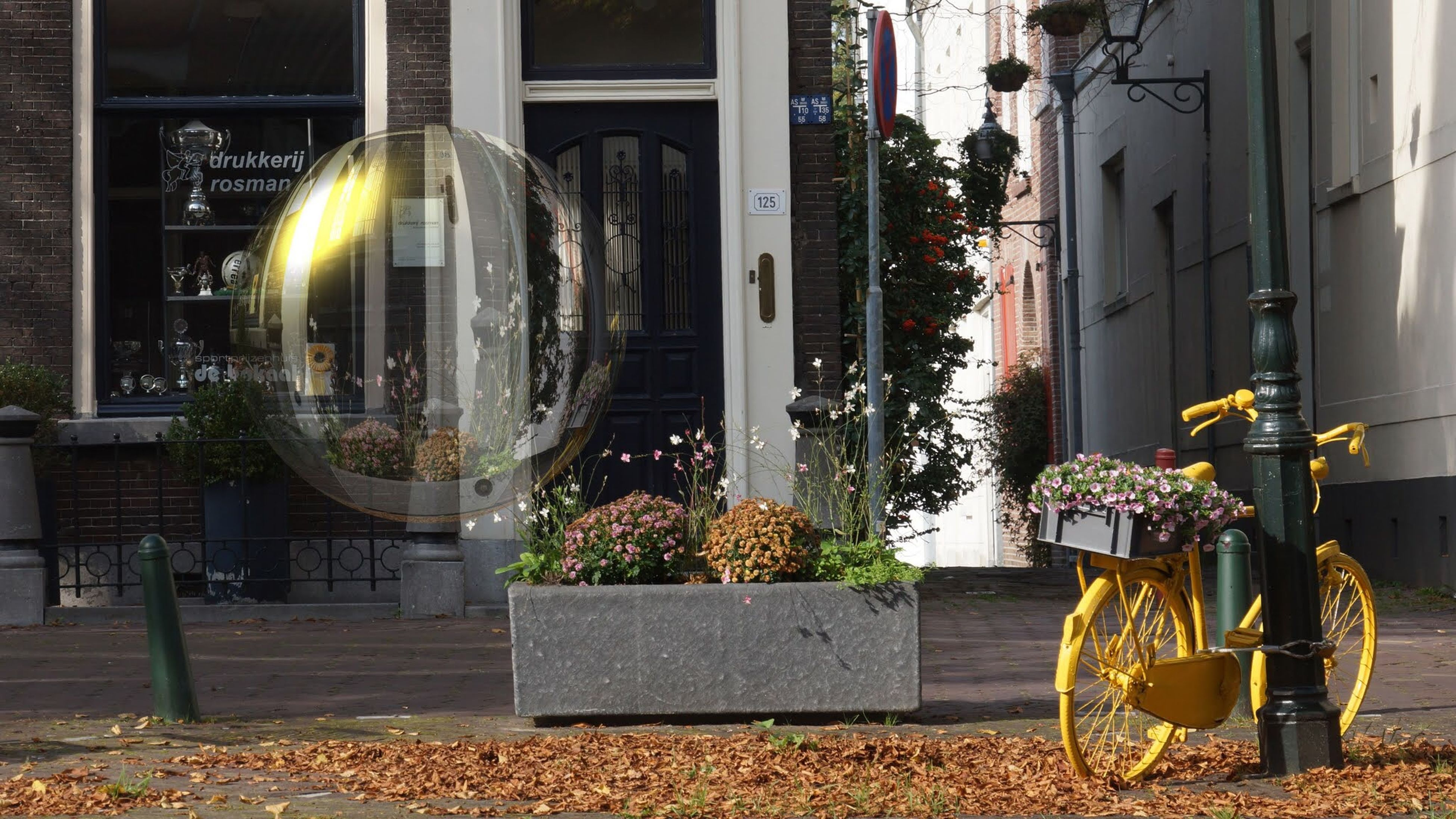 building exterior, architecture, built structure, potted plant, lighting equipment, house, window, plant, city, street light, chair, front or back yard, residential building, building, outside, residential structure, illuminated, flower, hanging, growth