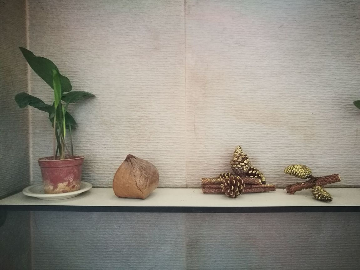 Pine No People Indoors  Leaf Plant Wood - Material Architecture Christmas Decoration Pine Cone Randomphoto