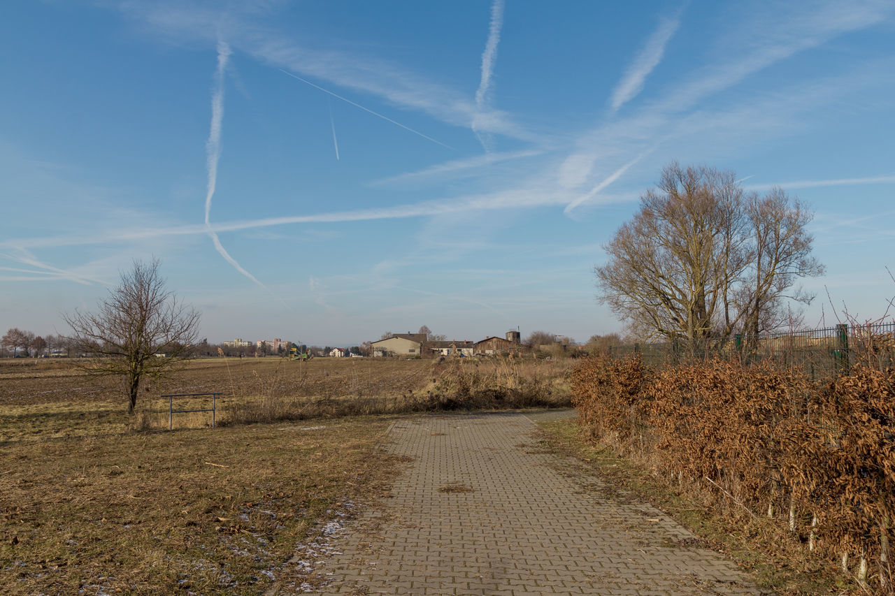 Landschaft mit Himmel Bare Tree Chemical Sky Chemtrails Day Landscape Nature No People Outdoors Sky Tree Tree Trunk