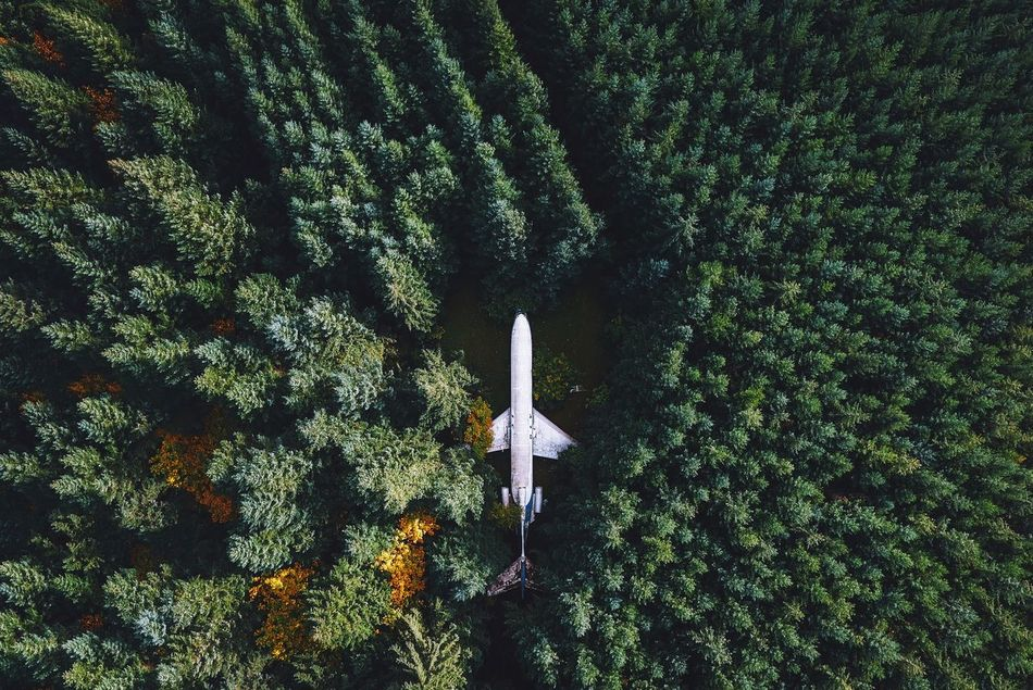 Beautiful stock photos of flugzeug, no people, low angle view, airplane, nature