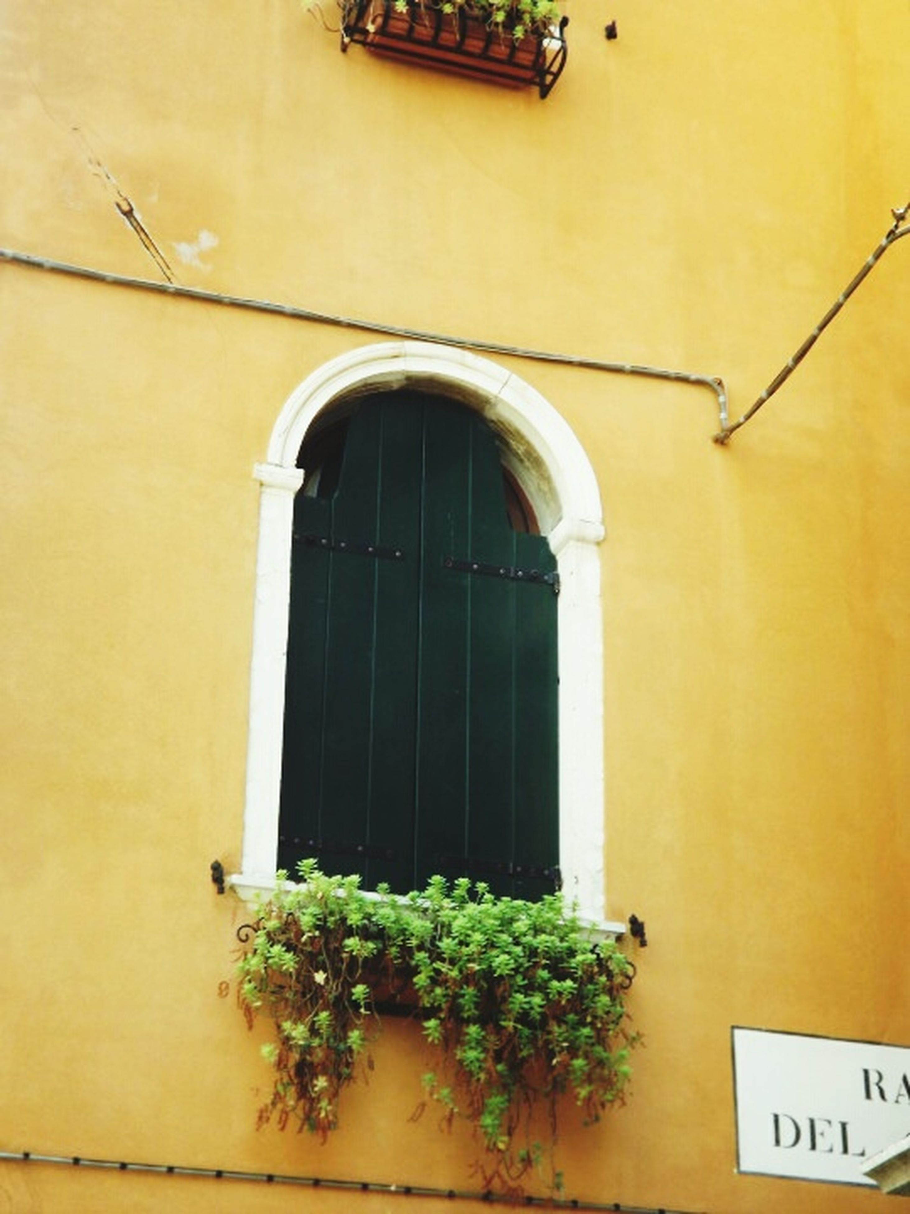 architecture, building exterior, built structure, yellow, window, house, door, closed, arch, residential structure, plant, building, residential building, outdoors, wall - building feature, entrance, green color, low angle view, no people, day