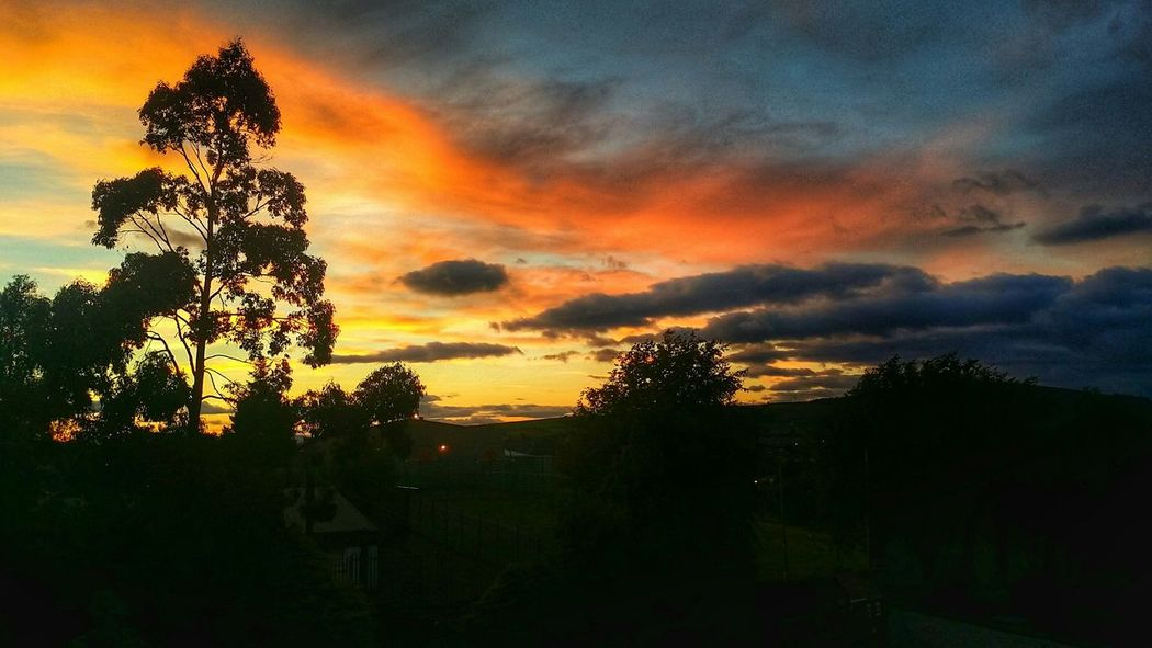Sunset Sunrise_sunsets_aroundworld Sunset_collection Sunset #sun #clouds #skylovers #sky #nature #beautifulinnature #naturalbeauty #photography #landscape Orange Sky My Town TOWNSCAPE
