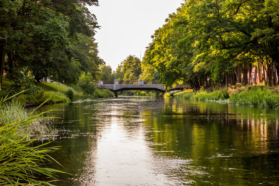 A river with a bridge over it in a beautiful sunset lighting. The photograph was taken in Slupsk, Poland. Bridge Green Landscape Lush Foliage Outdoors Poland River Slupia Summer Sunset Water