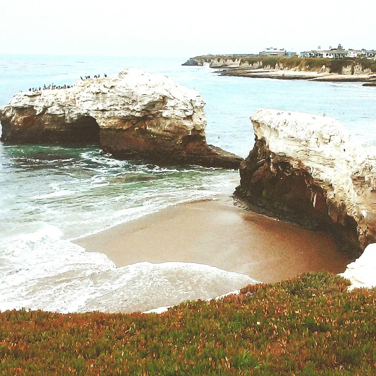 Take me back to the tidepools Beaches Ireallyenjoyusingfilters Imgettingbetteratthis