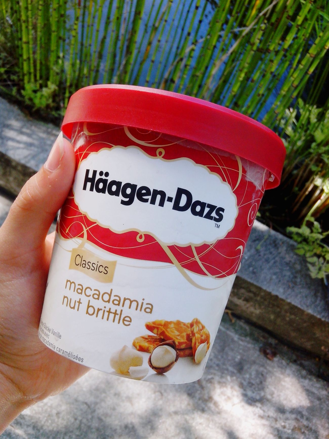 My life Haagendazs Macadamia Bon Perfect Miam Goûter A Moi