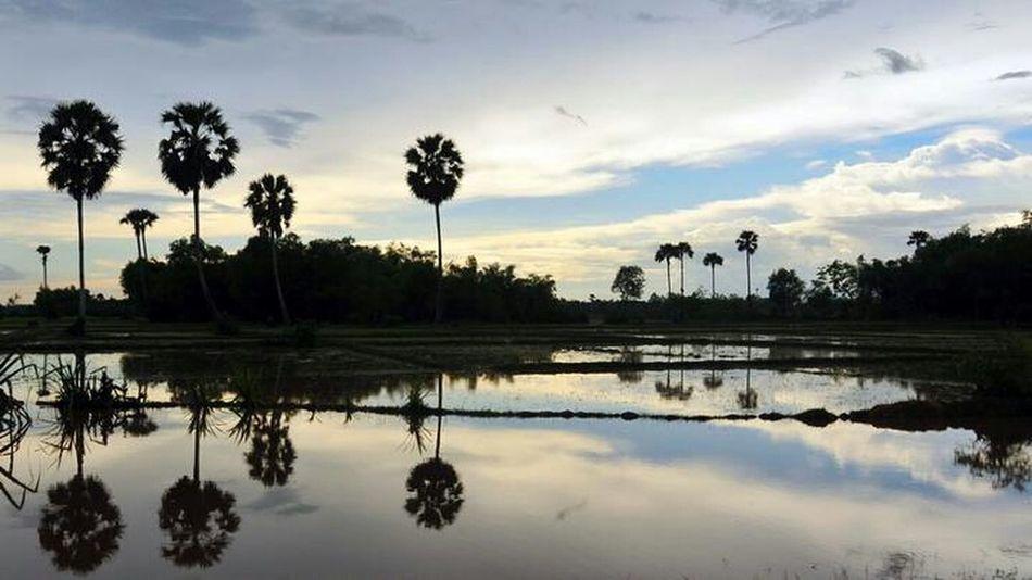 Vietnam Sunset Mekong River South Vietnam