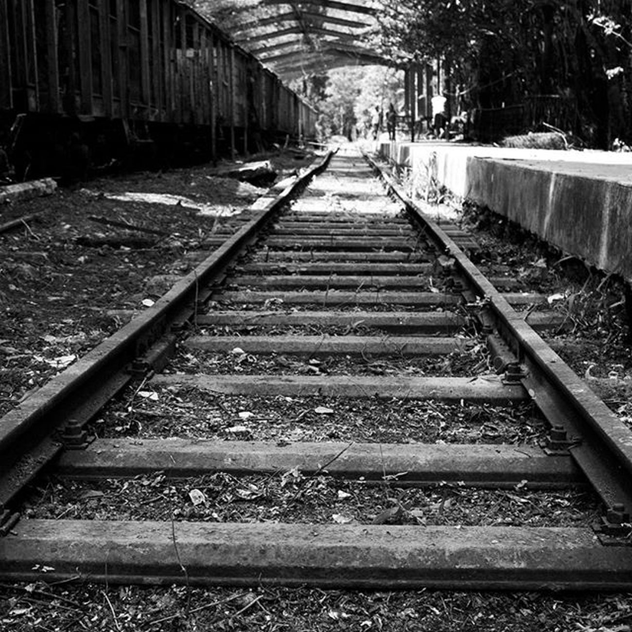 Sigue avanzando, aunque el camino parezca infinito, sigue. Estación de tren El Encanto-Los Teques Fotografiandoconelcorazon LivingVenezuelaVE Increiblevzla Elnacionalweb Ig_Venezuela_pro IG_GRANCARACAS VibraVenezuela Loves_venezuela Instavenezuela Nuestravenezuela_ Gf_venezuela Ig_caracas_ Venezuelansite Venezuela_estrella Ig_venezuela_ InstaLOVEnezuela Icu_venezuela Lovecamera_photo Fotomargarita InstaLOVEnezuela Venezuela_estrella Igrecommend Digers_vzla Digers_venezuela