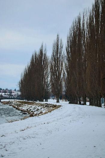 Snow Canon Picture Sky Beautiful Canon 70d EyeEm Best Shots Clouds Canonphotography Photography Slovakia Winter Trees Nature Water Way Liptovskymikulas