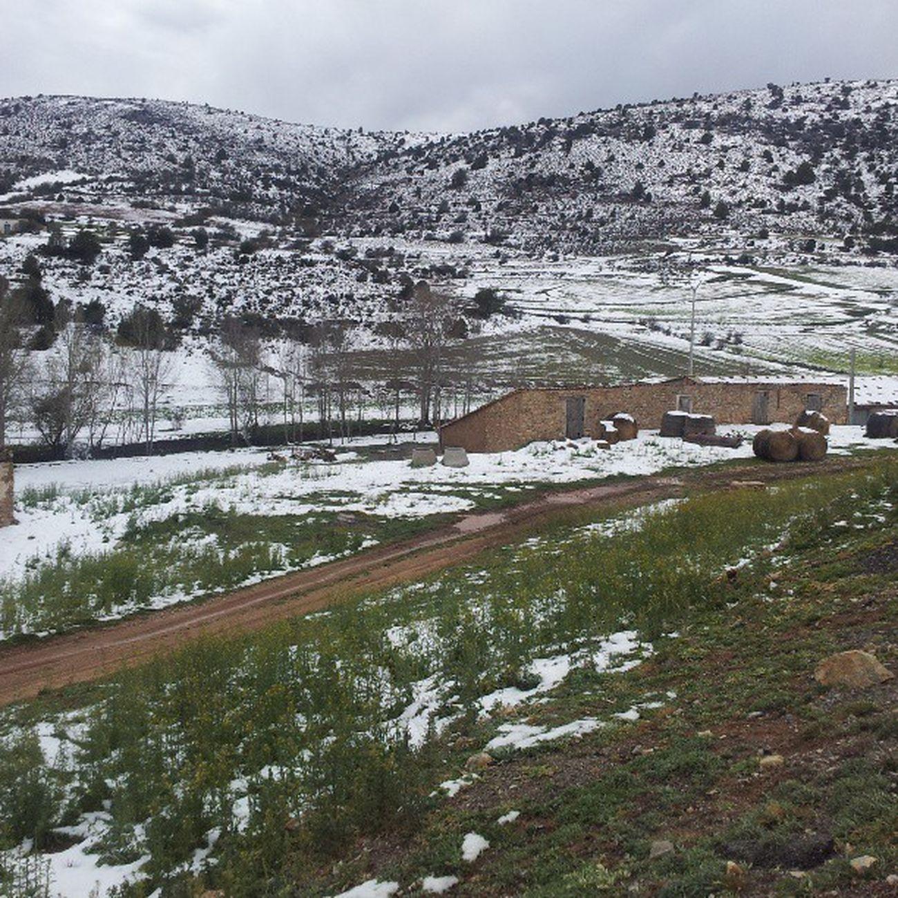 Disfrutando de la tranquilidad de la Sierradealbarracin Sienteteruel