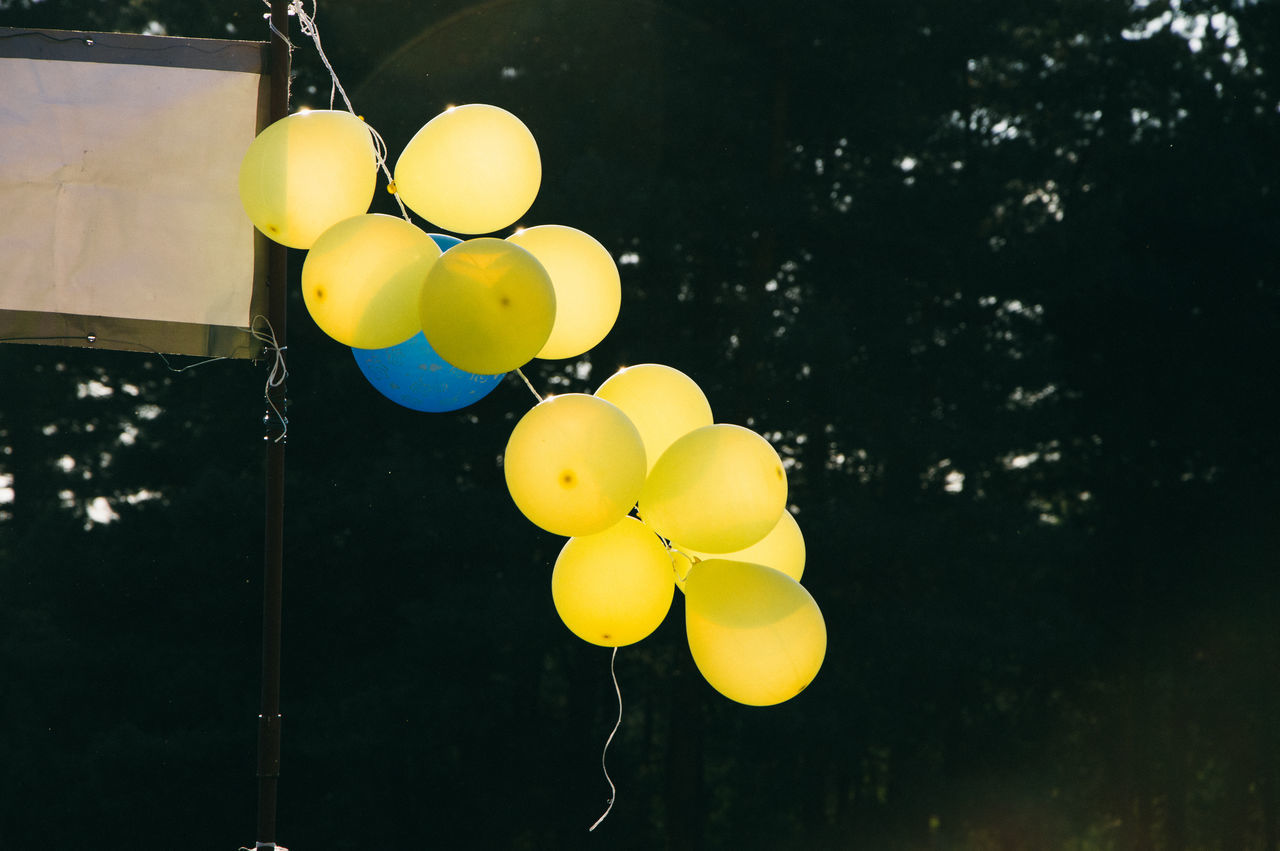 balloon, yellow, celebration, helium balloon, outdoors, low angle view, hanging, no people, multi colored, day, tree, close-up