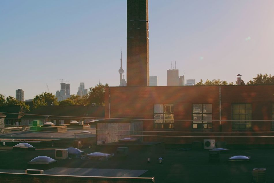 View from the East. Built Structure Clear Sky Sunbeam Architecture City Tree No People Sky Outdoors Motion Court Skyscraper Day Water Open Edit Toronto Torontophotographer Canada Leslieville Eastend Cntower Buildings Architecture Cityscape Sunlight