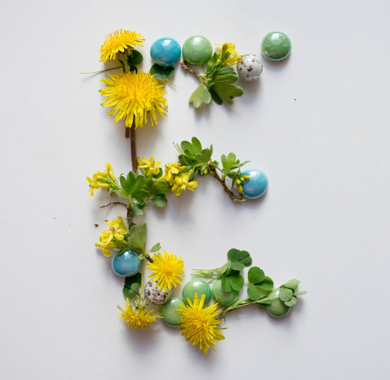 Alphabet Close-up Day E Flower Food Fragility Freshness Growth High Angle View Indoors  Letter Letter E Multi Colored Nature No People Plant Studio Shot White Background