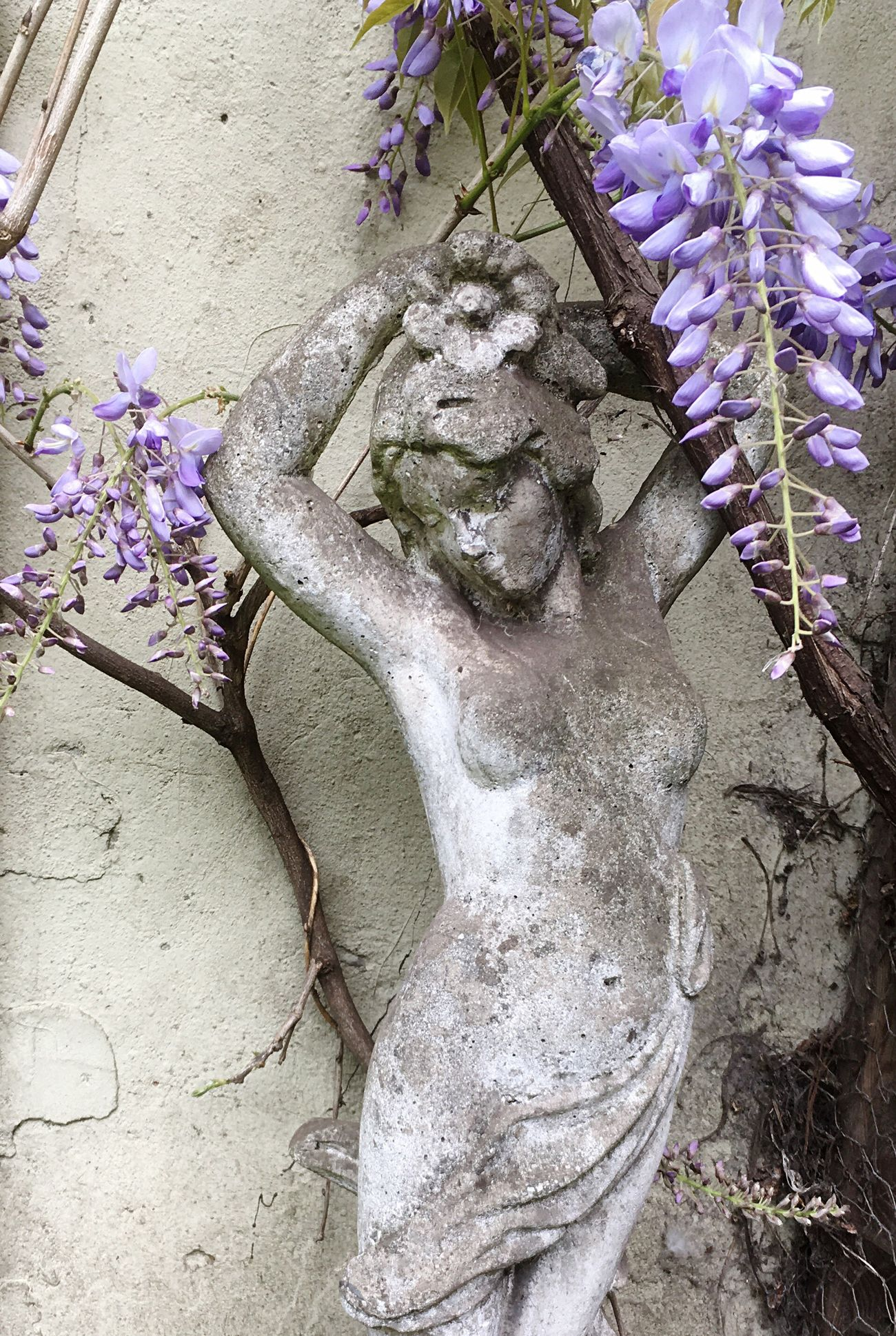 Flower Purple No People Fragility Close-up Stillness Strike A Pose! Statues/sculptures