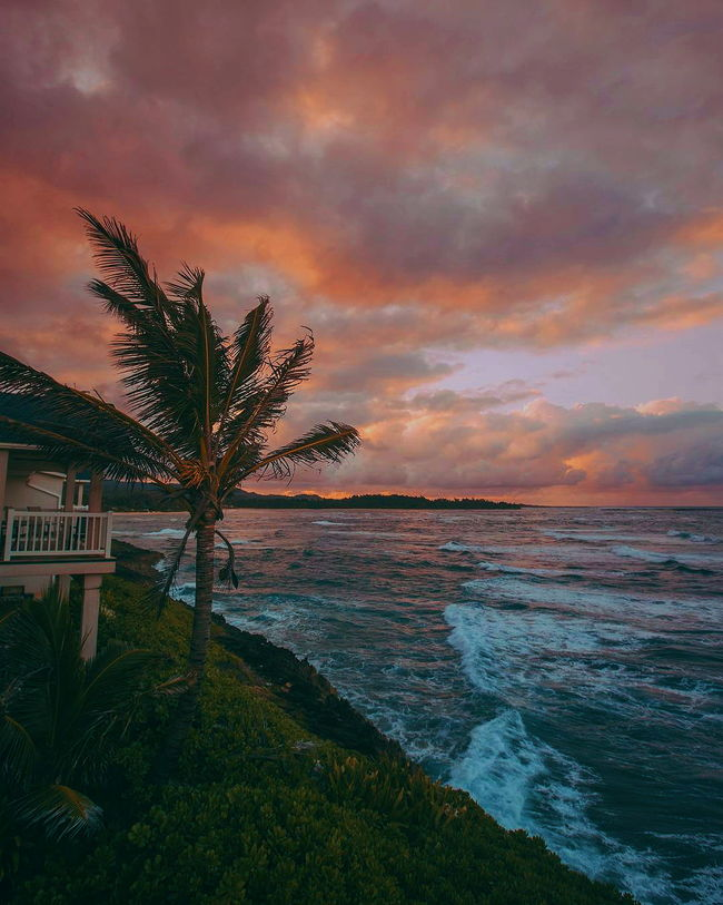 ☥☯☮ 📸debodoes Vacations Beach Beauty In Nature Sky Sunset Horizon Over Water Travel Destinations No People Tree Sea Cloud - Sky Palm Tree Landscape Tranquility Outdoors Nature Beauty Scenics Multi Colored Water