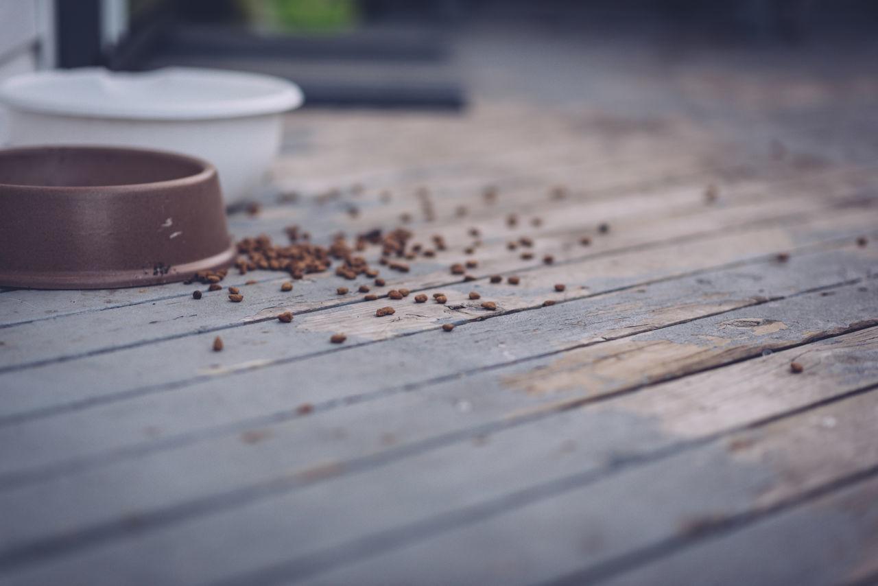 Close-up Deck Dog Bowl Dog Food Food Selective Focus Spilled Food Surface Level Wood Panels