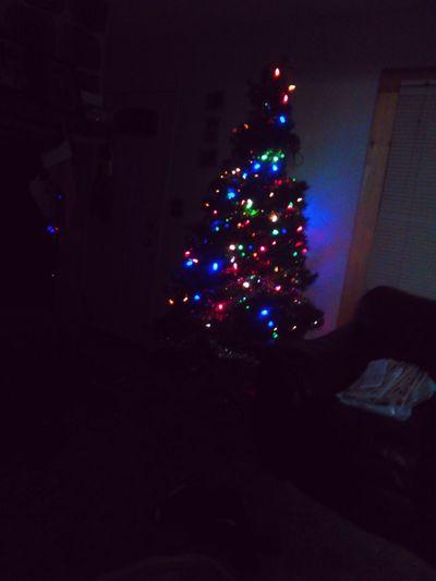 Lol,Christmas!