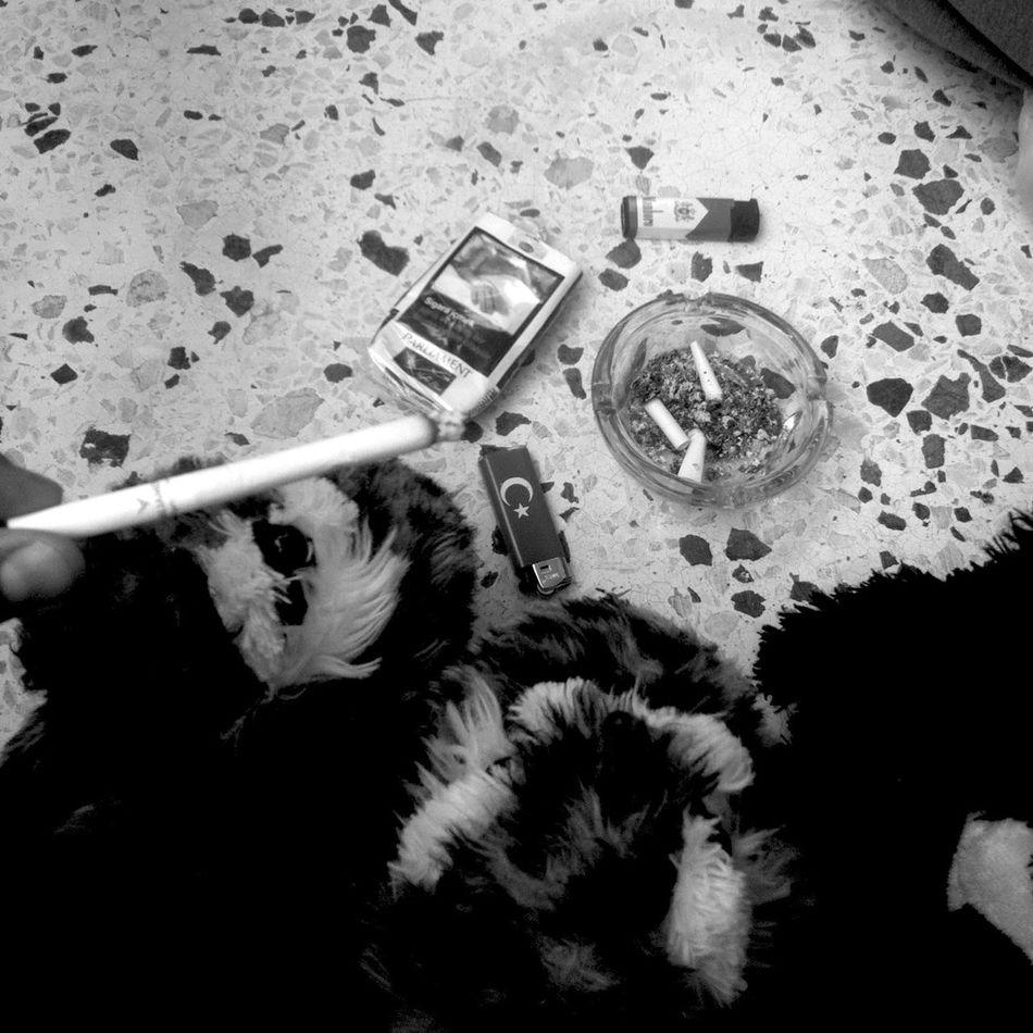 Black & White Cigarette  Turkey Friends Cigarette Time Shoes ♥ Lighter Cigarettes 👌💕