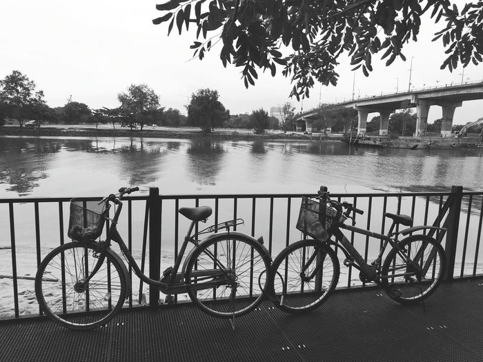 Transportation Bicycle Mode Of Transport Land Vehicle Stationary Water Tree Parking Parked Cycle Absence Architecture Bicycle Basket River Canal Day Promenade Outdoors