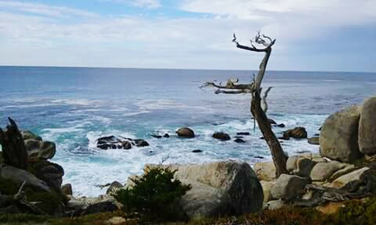 Carmel California 20miledrive Ocean Blue Sky Clouds Waves, Ocean, Nature Outdoor Photography Nature Photography Rocks And Water Tree Blue Wave