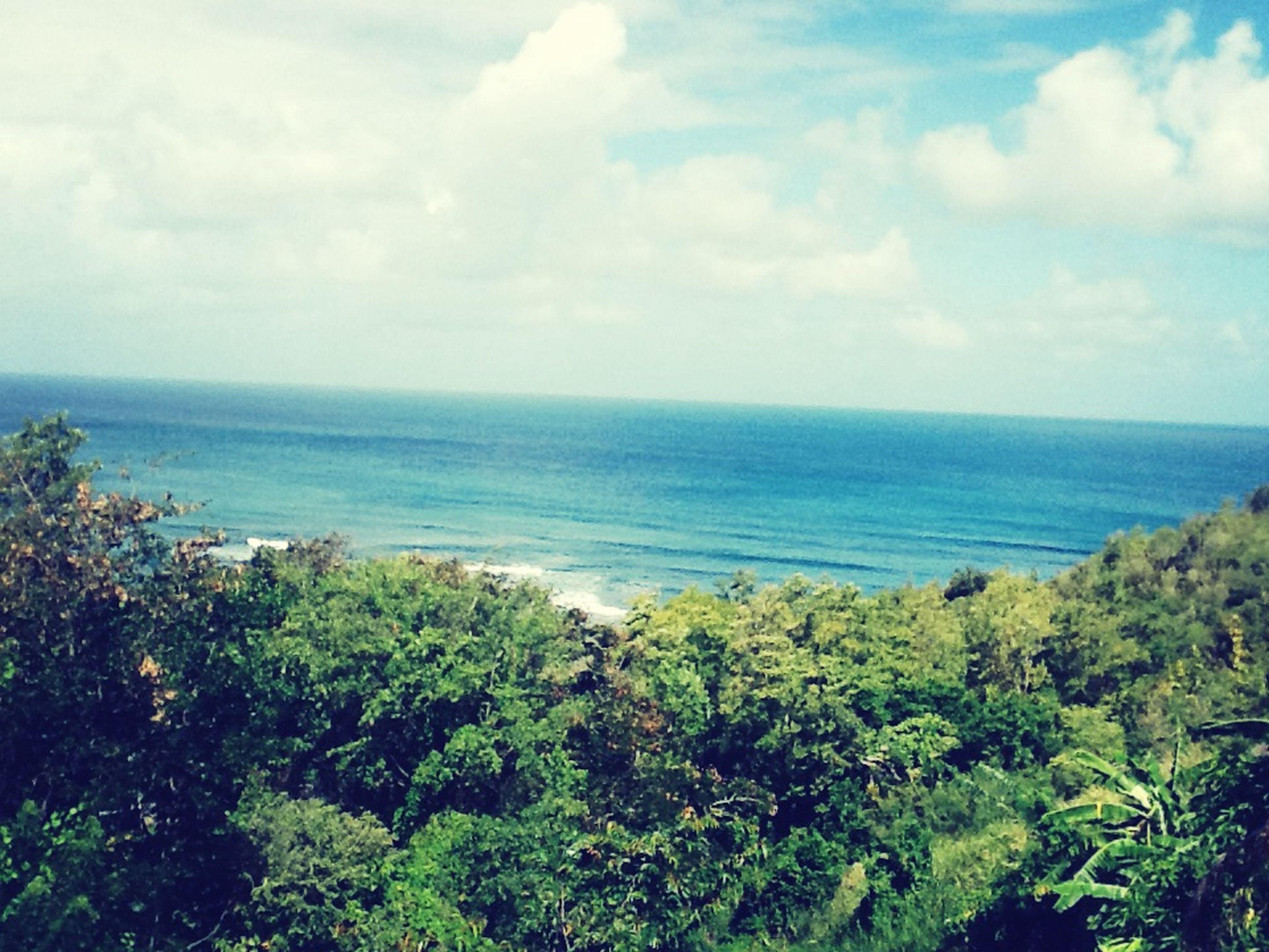 water, sea, scenics, tranquil scene, horizon over water, tranquility, beauty in nature, sky, tree, nature, beach, idyllic, shore, day, blue, outdoors, cloud, cloud - sky, coastline, non-urban scene