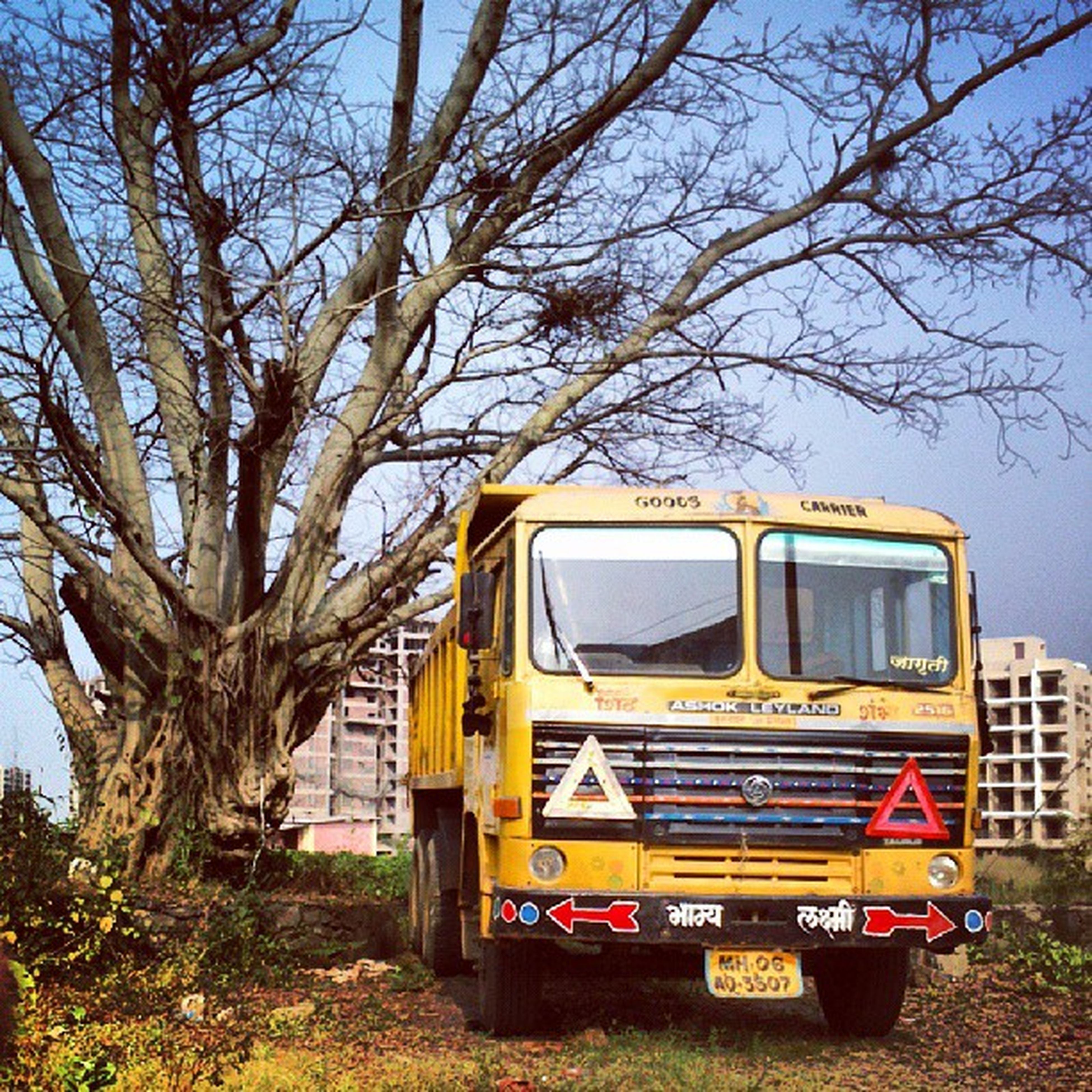 transportation, mode of transport, land vehicle, tree, car, building exterior, architecture, built structure, stationary, yellow, bare tree, day, sky, outdoors, no people, parking, travel, clear sky, parked, sunlight