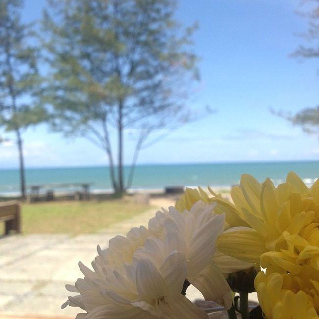 Lunch time pahinga..Work will resume later..;) Siesta Lunch Tanghalian Baler summer beach workmodeon sand flower
