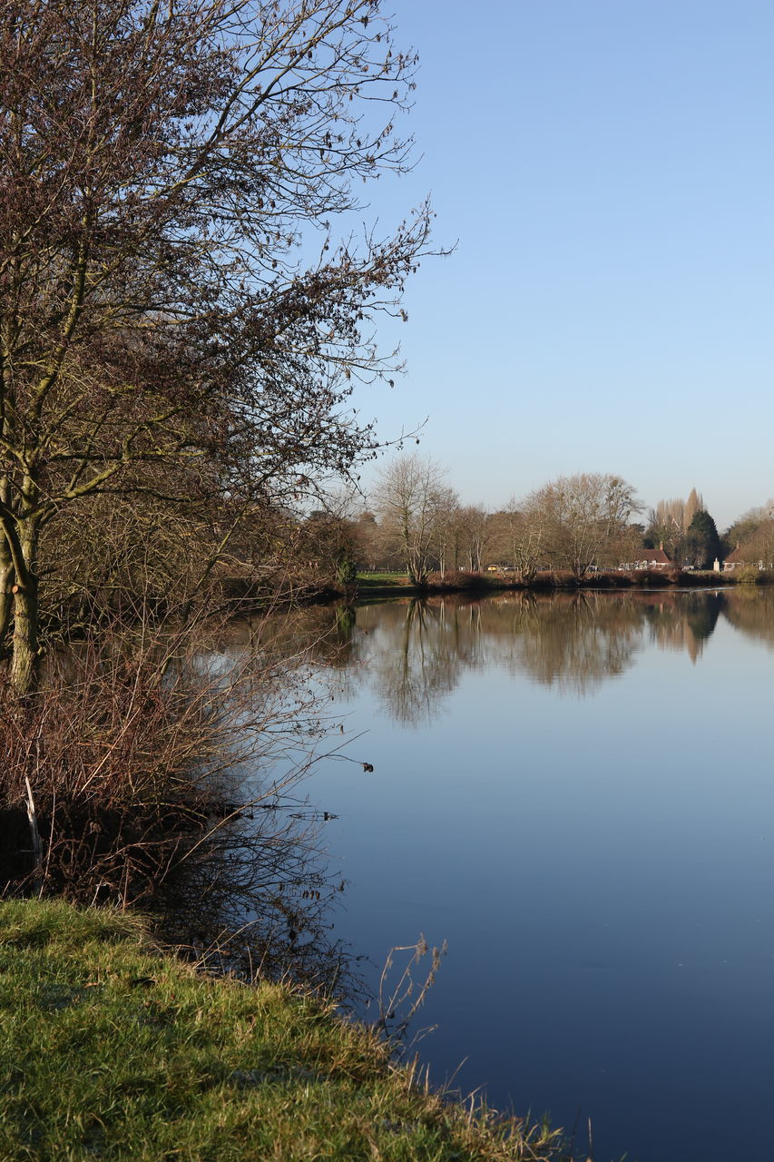 water, reflection, nature, tranquil scene, lake, scenics, tree, tranquility, outdoors, beauty in nature, no people, day, sky, grass
