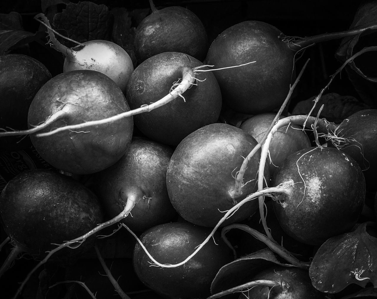 Black and white fresh produce radishes in a bunch Healthy Eating Freshness Food Food And Drink Vegetable Market Farm To Table Produce Fresh Produce Vegan Vegetarian Food Black And White Radishes Bunches Market Stall No People Large Group Of Objects Farmer Market Close-up