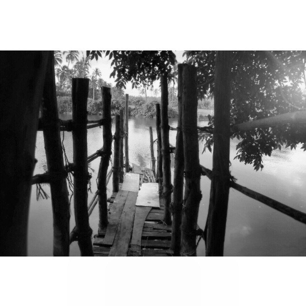 Narrow Jetty On Lake