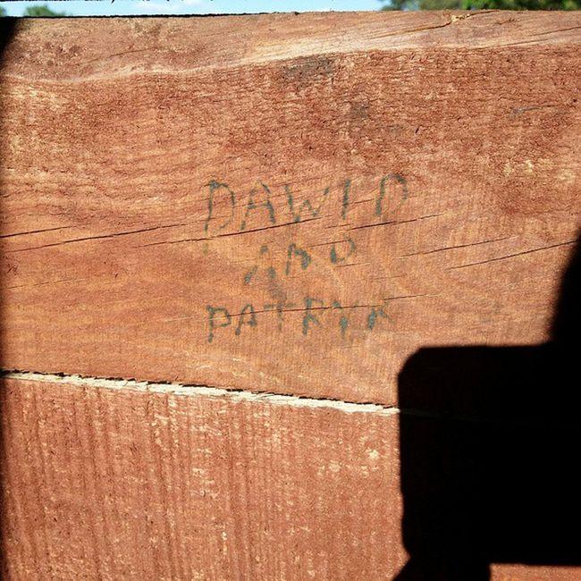 Dawid And Patryk Miało Byc Inne Imie Ale Nic Co Dobre Ect :)Forestr Alone Pseudo Ja Jeszcze 18 Dni 18dni Las Słońce Ostre