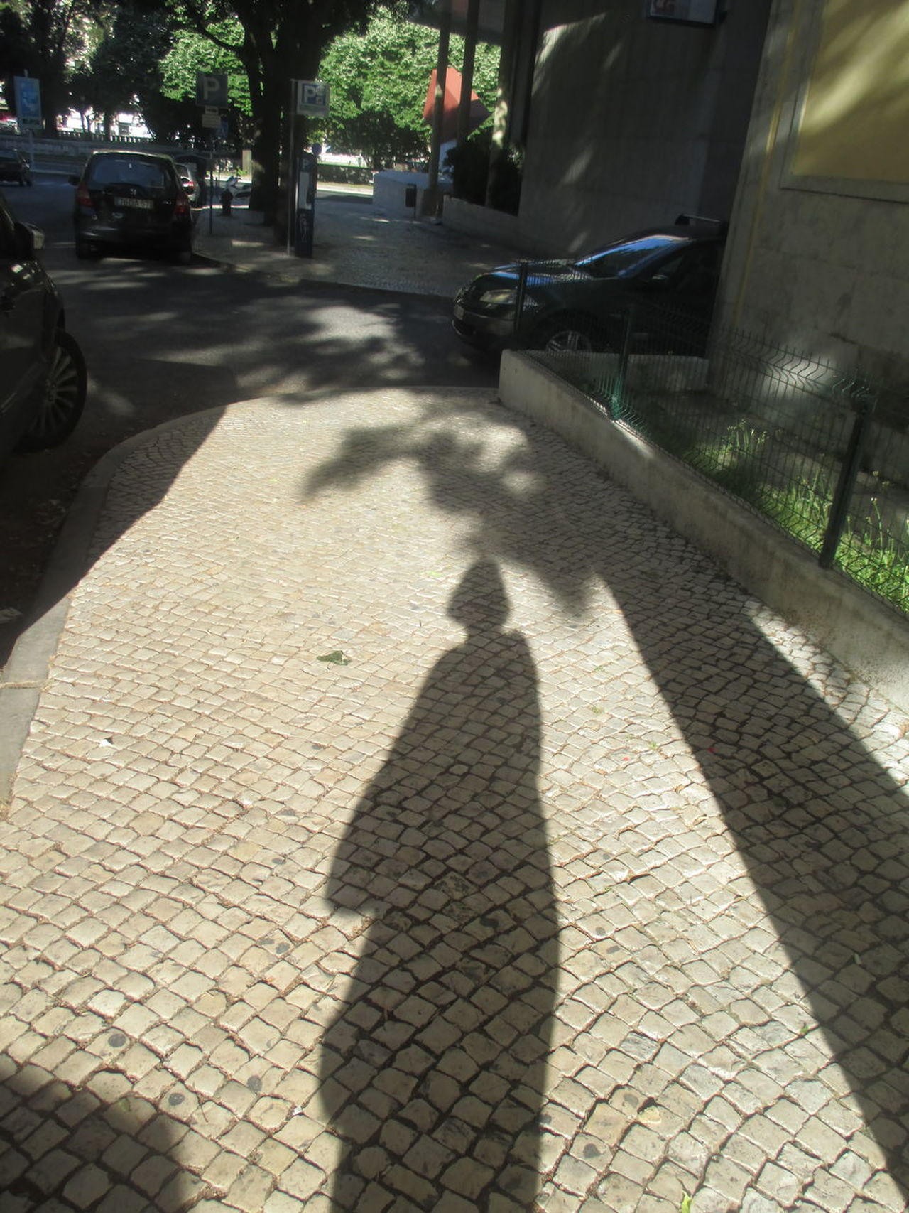 Beautiful Shadow Car City Clear Shadow Cobblestone Day Detail Detail From A Park Ellegant Shadow Focus On Shadow Loneliness Mystery One Person Outdoors Path Forward People Real People Shadow Shadow And Light Shadow Of A Tree Shadow Of A Woman Shadow On The Cobblestone Pavement Street Sunlight Sunny Day