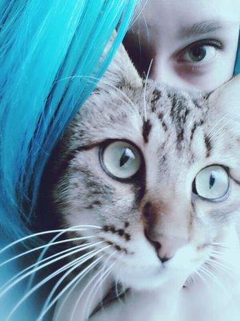 Ball of evil and a smurf. Photography of selfie. Selfie Time Kitty Cats  Kitty!  Cat♡ Blue Smurf