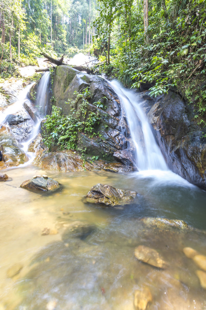 waterfall, water, flowing water, motion, nature, long exposure, blurred motion, scenics, beauty in nature, forest, rock - object, no people, tranquil scene, outdoors, tree, day
