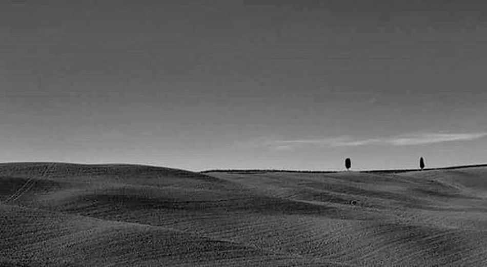 Endless fields... Europe Trip Toskania Europe View Drzewo Canon6d Canon Landscape Fields Pienza Tuscany Visiting Italy Italia Shadow Travelling Pole Tree Tourism Travel Tourist The Great Outdoors - 2017 EyeEm Awards