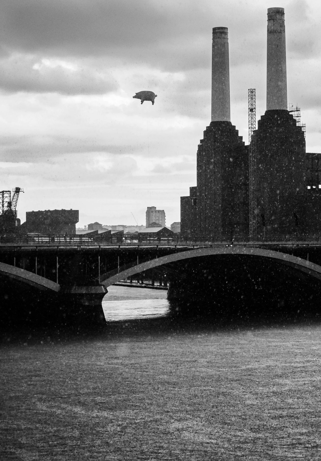 Anniversary Battersea Battersea Power Station Blackandwhite Photography Bridge Flying Pig Music Pig Pink Floyd Rain Thames