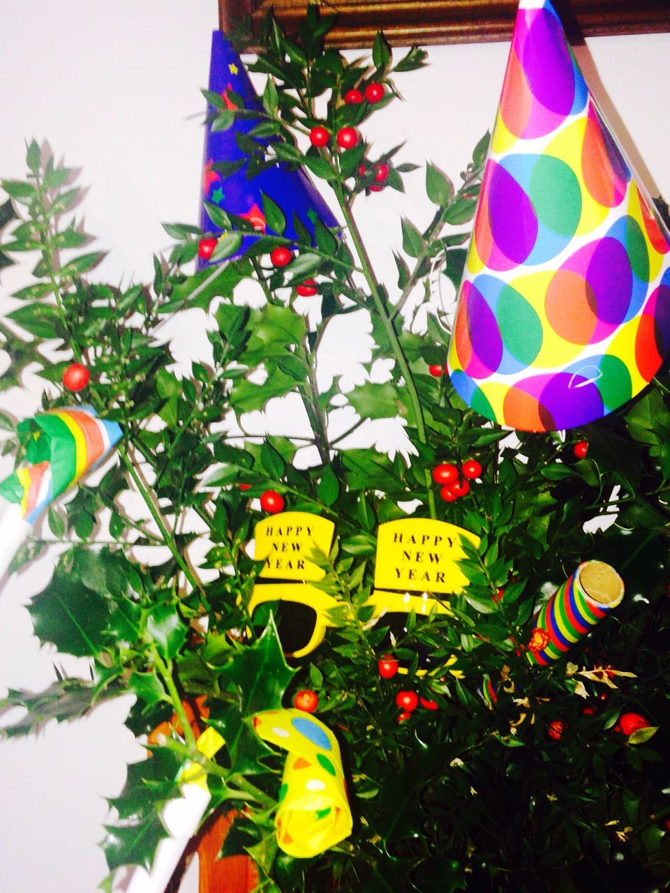 multi colored, decoration, celebration, tree, hanging, low angle view, no people, balloon, christmas, plant, leaf, day, flower, close-up, outdoors, christmas decoration, helium balloon, nature