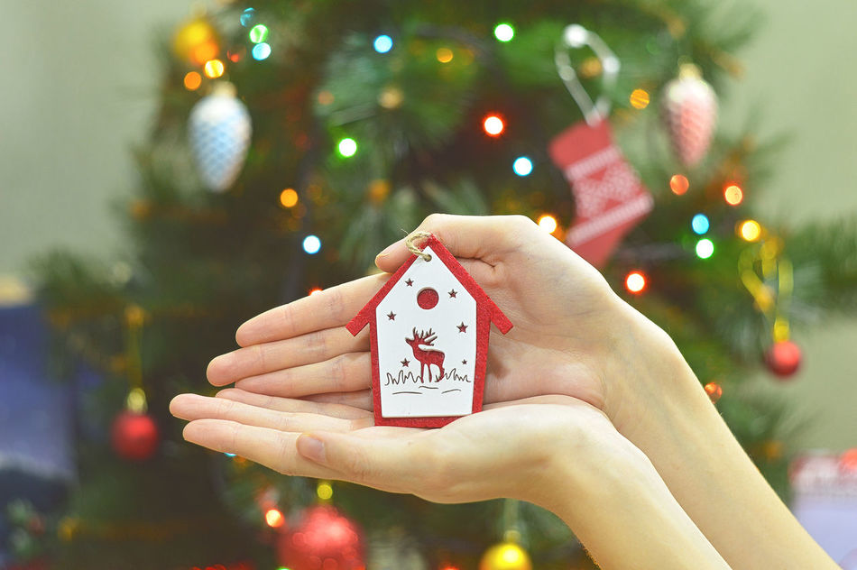 Hands Decorating Christmas tree with bauble, New Year decoration Adults Only Bauble Celebration Christmas Christmas Decoration Christmas Lights Christmas Ornament Christmas Tree Close-up Colorful Festive Focus On Foreground Holding Home Human Hand Indoors  Light New Year's Eve One Person People Red Season  Shiny Toy Winter
