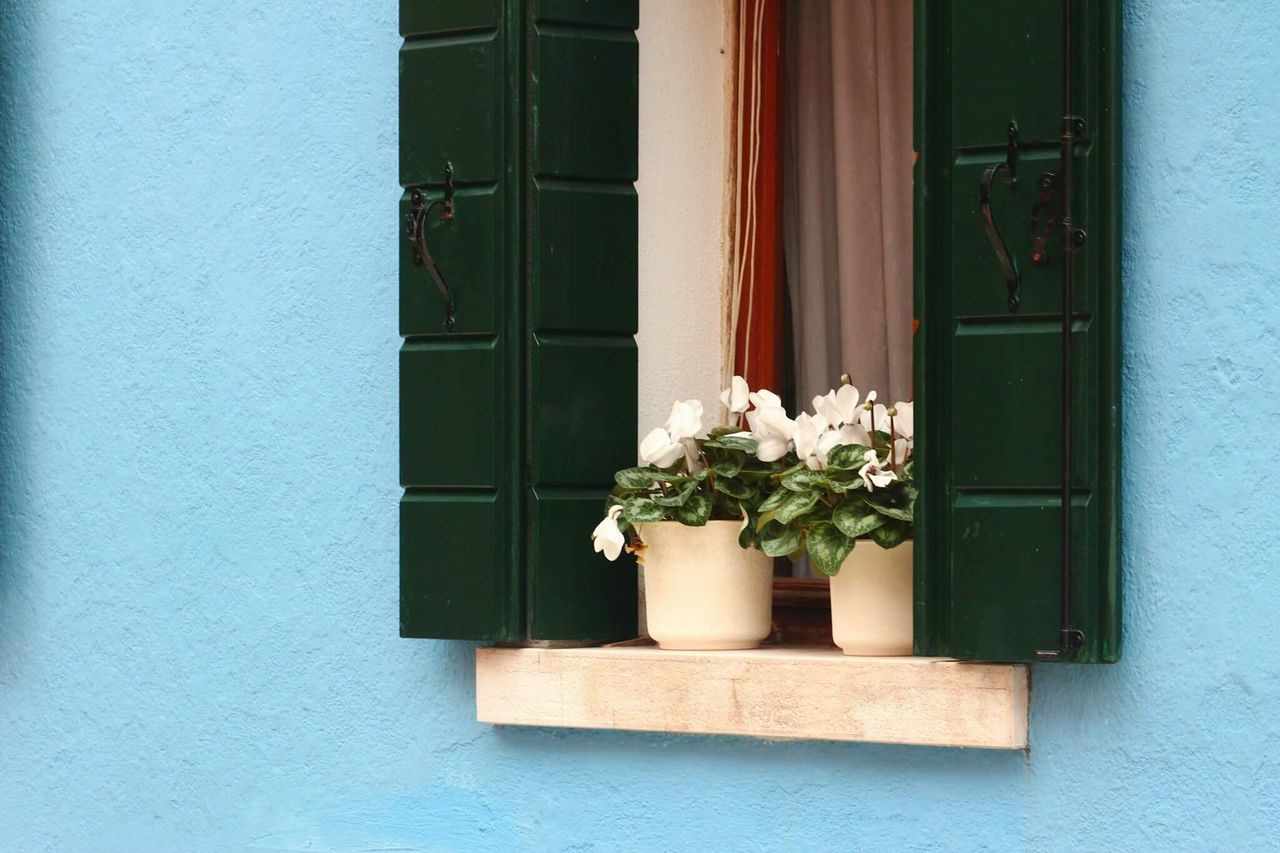 Flowers Flower Window Plant Building Exterior House Built Structure No People Day Outdoors Architecture Nature Burano Venice Italy Architecture