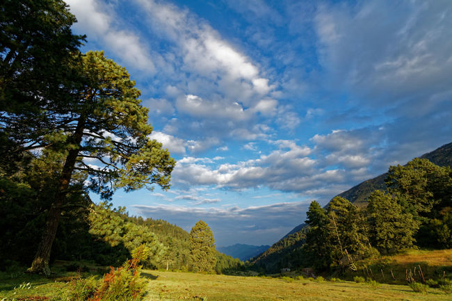 El Tarillal Beauty In Nature Cloud - Sky Countryside Green Landscape Mountain Mountain Range Mountains Nature Outdoors Rural Scene Scenics Sky Solitude Tranquility Tree Valley