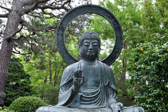 Budda Statue @ Japanese Tea Garden 2 Golden Gate Park San Francisco Ca Bronze Cast 1790 Tajima, Japan Cast For Taionji Temple Presented To The Garden In 1949 Budda (563? To 483 B.C.) Born Prince Siddhartha Of The Sakyas The Historic Founder Of The Buddist Religion Renounced His Home Of Luxury At Age 29 Known As Budda, The Enlightened One Landscape Landscape_photography Landscape_Collection Landscape_lovers Japanese Tea Garden